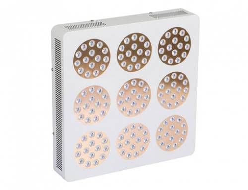 385w, 675w Apollo horticulture led grow light from China factory