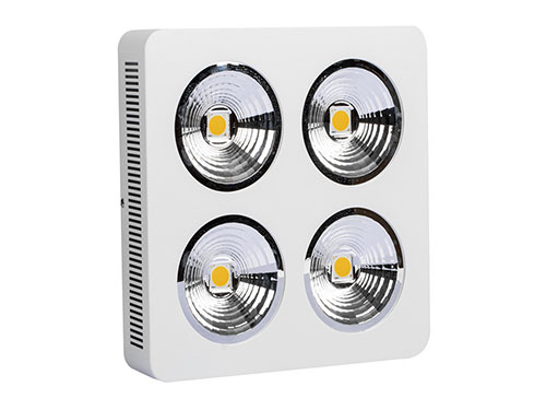 400W, 800W Cree chips indoor LED plant light with reflector